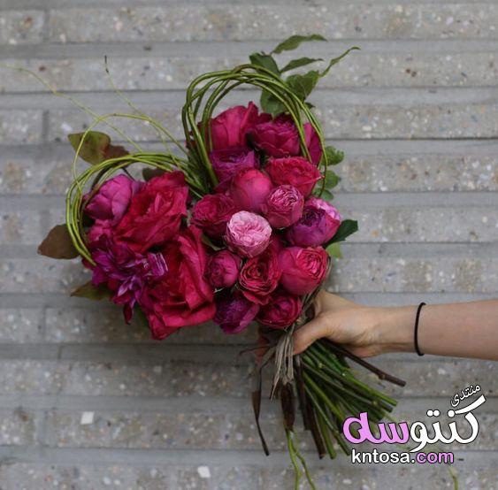 اجمل باقات الورد الطبيعي,اجمل باقة ورد رومانسية,اجمل الورود الرومانسية,اشكال باقات ورد هدايا,ورد حلو kntosa.com_02_19_155