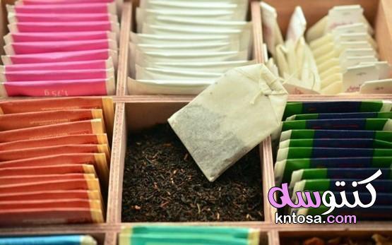 هل سمعت عن الشاي الأبيض؟،8 فوائد وفيرة من الشاي الأبيض لصحة جسمك،فوائد الشاي الأبيض للصحة kntosa.com_02_19_157