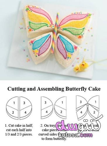كعكة على شكل فراشة منتدى كنتوسه kntosa.com_03_21_162
