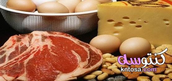 البروتينات فوائد البروتينات مصادر البروتينات kntosa.com_04_19_156