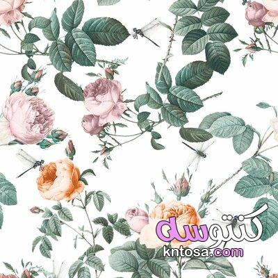 خلفيات فكتور متنوعة ورد زهور ديكور ورق جدران تموج تقنية،خلفيات زهور خضراء ديكور جميل اه تحميل png