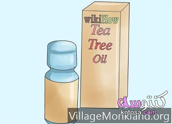 كيفية إزالة القمل باستخدام زيت Melaleuca kntosa.com_06_21_162