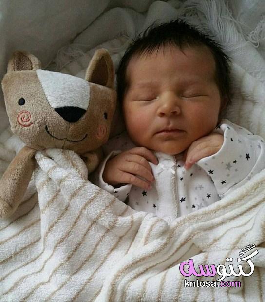 اطفال مواليد بالصور اجمل اطفال حديثي الولادة صورأطفال بيبي بنات
