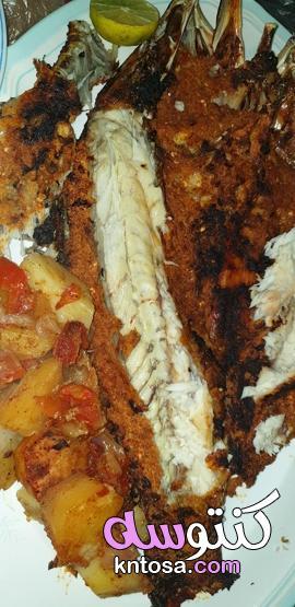 طريقة عمل صينية السمك بالبطاطس - منتدى كنتوسه kntosa.com_08_21_162