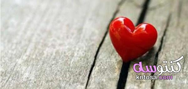 كيفية التعامل مع شريك الحياة ، فن التعامل مع شريك الحياة , افضل طرق معاملة الزوج 2020 kntosa.com_09_19_156
