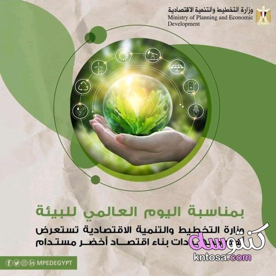 أنشطة بمناسبة اليوم العالمي للبيئة منتدى كنتوسه