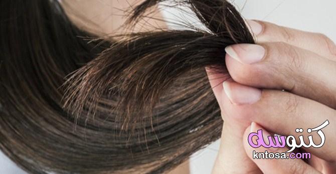 افضل علاج للشعر التالف والمتقصف| 6 وصفات لشعر أكثر حيوية kntosa.com_10_21_161