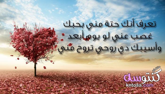 رسائل حب وغرام قصيرة رومانسية 2020 تشعل مشاعر الغرام بين المحبين kntosa.com_12_19_155