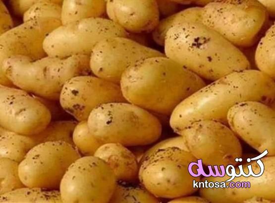 خليك بطاطس , خليك زى بطاطس , صفات البطاطس kntosa.com_12_19_156