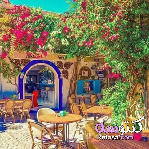 صور المقاهي وجمالها في العالم 2020 kntosa.com_12_20_157