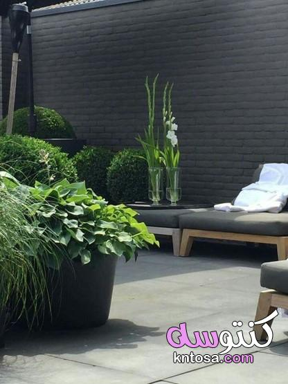 ديكورات زرع داخل المنزل2020،تنسيق النباتات داخل المنزل،تزيين المنزل بالنباتات الصناعيه kntosa.com_13_20_158