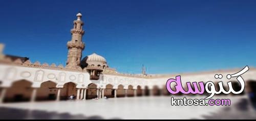 مشاهير اعتنقوا الإسلام kntosa.com_13_21_163