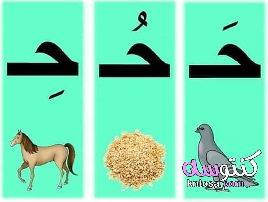 تعليم الاطفال كتابة الحروف العربية بطريقة سهلة pdf kntosa.com_14_19_156