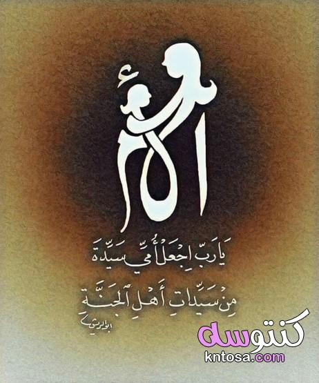 عجائب الأم السبع kntosa.com_14_21_161