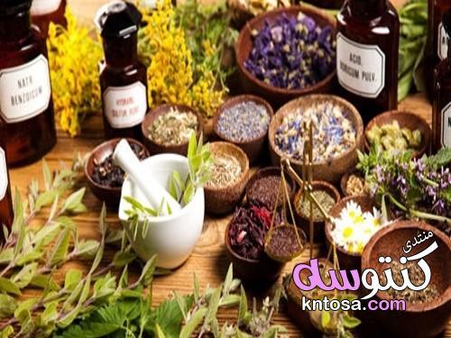 هل شاي الأعشاب لتهدئة المعدة والأمعاء آمن للأطفال؟ وما فوائده. kntosa.com_15_19_155