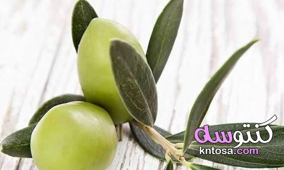 فوائد اوراق الزيتون للاسنان وطريقه استخدامه بالتفصيل kntosa.com_15_21_161