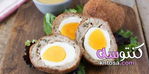 طريقة عمل بيض اسكتلندي kntosa.com_15_21_163