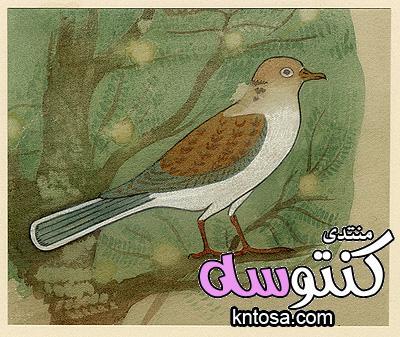 رموز مصرية قديمة رسمت باسم اللورد هوارد كارتر الجزء الثالث kntosa.com_16_18_153