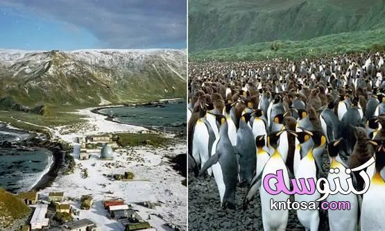 غزو الحيوانات.. 7 جزر خرجت عن سيطرة البشر 2020 kntosa.com_16_19_157