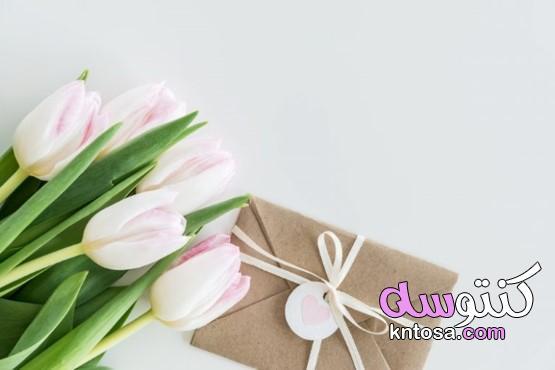 رسائل تهنئة بمناسبة عقد القران kntosa.com_16_21_161