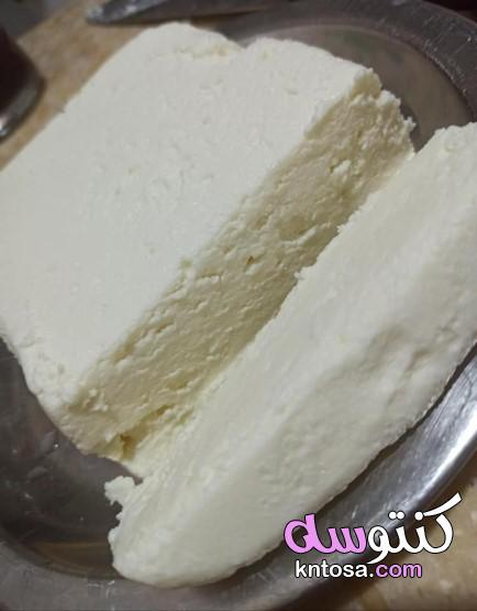طريقة عمل الجبنة في المنزل بكل سهوله kntosa.com_16_21_161