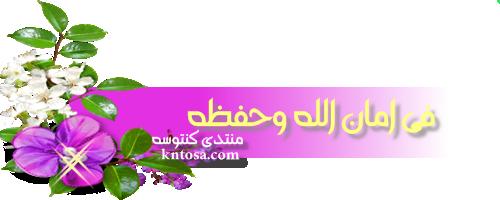 لو فكرت تجرح حد 2019 kntosa.com_17_18_153