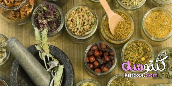 علاج حساسية الأنف بالأعشاب,اعراض حساسية الأنف,طرق طبيعية لعلاج حساسية الأنف kntosa.com_17_19_155