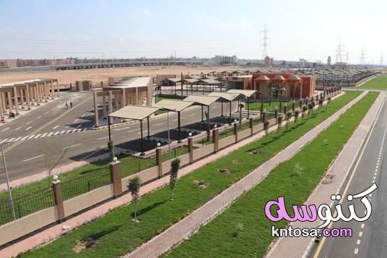 بالصور الموقف الإقليمى بمدينة 6 أكتوبر kntosa.com_17_20_160