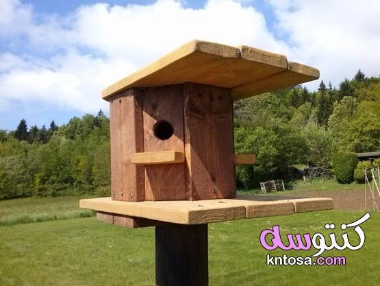 خشب البليت Birdhouse kntosa.com_17_21_162