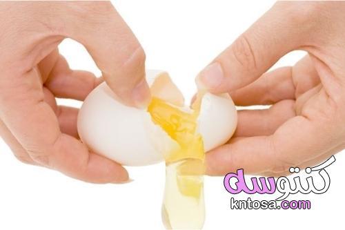 كيف تتعرف على بيضة طازجة من بيضة منتهية الصلاحية؟ kntosa.com_17_21_163