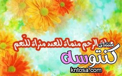 صور عن صلة الرحم,بوستات عن صلة الرحم,منشورات عن صلة الرحم,حكمة عن صلة الرحم2019 kntosa.com_18_18_153