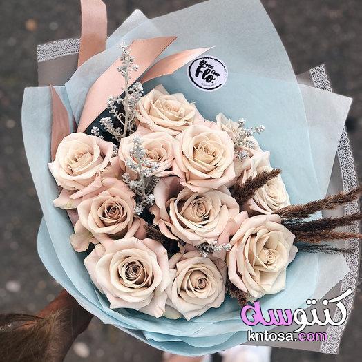 اجمل ورود الحب , ورود رومانسية,احلى صور ورود 2020 جوده عالية , صور زهور منوعة . اجمل صور ورد kntosa.com_19_19_156