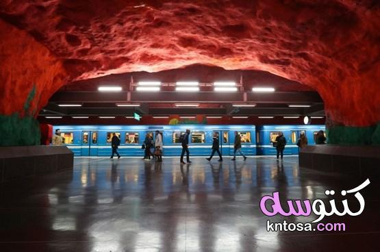 أشياء مثالية لا يمكنك مشاهدتها إلا في السويد 2020 kntosa.com_19_20_157