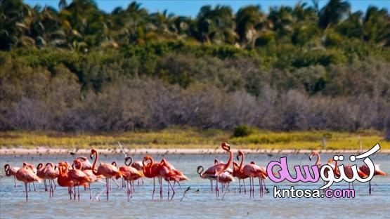مناطق الجذب الطبيعية في جمهورية الدومينيكان،جمهورية الدومينيكان ليست مجرد عطلة على الشاطئ!