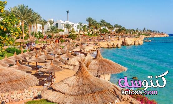 افضل وقت للسفر إلى شرم الشيخ kntosa.com_19_21_162