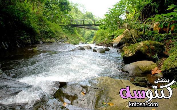 شلال جت جت اندونيسيا,رحلة إلى شلالات,صور ومعلومات اندونيسيا,أجمل الشلالات في اندونيسيا kntosa.com_20_18_154