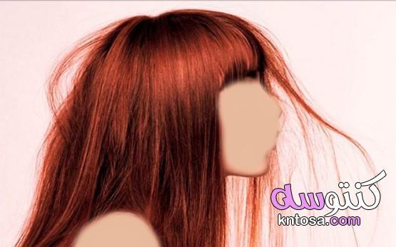 كيفية تحديد درجة مسامية الشعر؟ kntosa.com_20_19_157