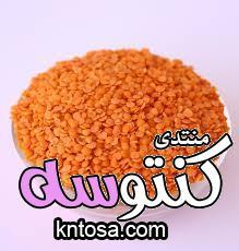 فوائد صحية لشوربة العدس واحنا داخلين على الشتا kntosa.com_21_18_154