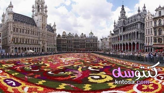 تقرير عن أهم مدن بلجيكا