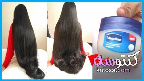 تكثيف الشعر بالفازلين في أسبوع بدون أدوية حتى يصبح مثل ذيل الحصان kntosa.com_22_21_162