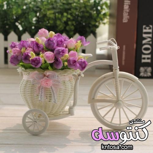 خلفيات زهور لسطح المكتب,صور خلفيات سطح المكتب روعه,دراجة زهور جميلة2019 kntosa.com_26_18_154