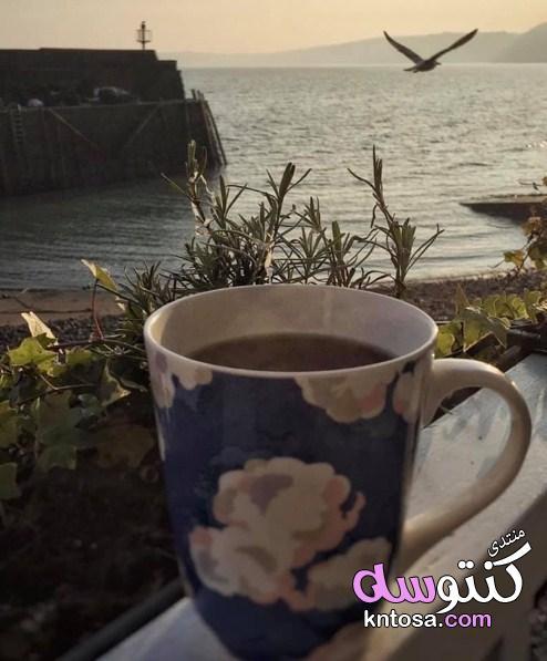 صور القهوه مع الطبيعية,صور فنجان قهوة,عشاق القهوة,احلى صور فناجين قهوه الصباح kntosa.com_26_19_155