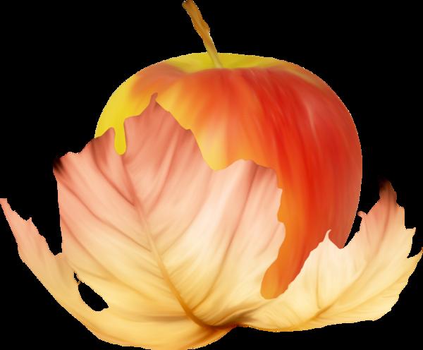 سكرابز فواكهة حصريا لكنتوسة 2018, سكرابز فواكهة بدون تحميل,سكرابز فواكهة بخلفيات شفافة kntosa.com_27_18_154