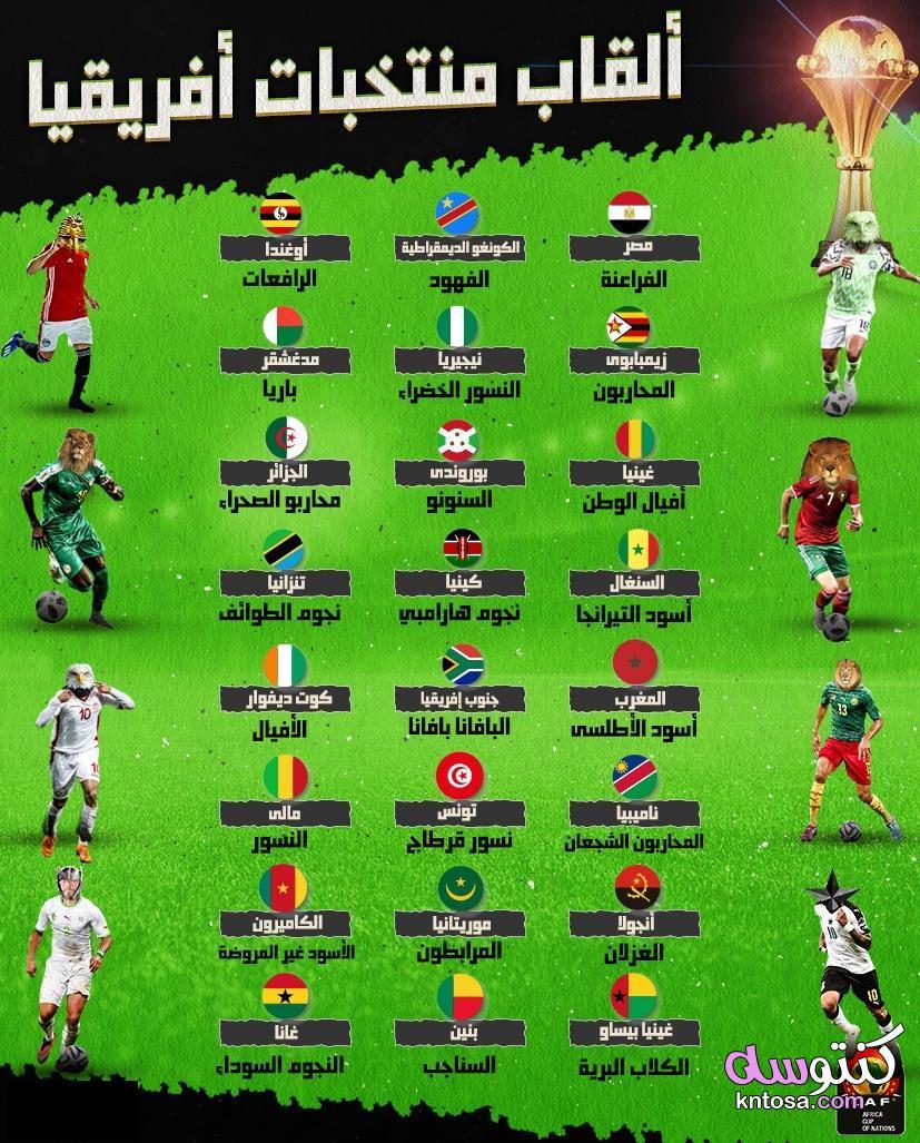 ألقاب منتخبات أمم أفريقيا 2019 أشكال وألوان kntosa.com_30_19_156