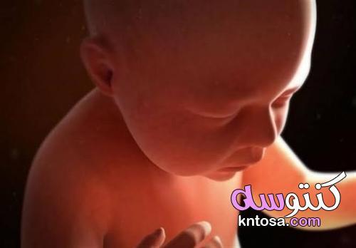 لماذا تعتبر عمليات الإجهاض حرام شرعاً ؟.. ومتى تجوز kntosa.com_30_21_162