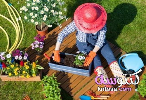 الاستخدامات غير المعروفة لبيروكسيد الهيدروجين في الحديقة kntosa.com_31_21_162